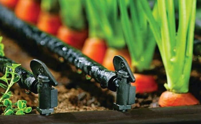 Атоматческий полив огорода своими руками