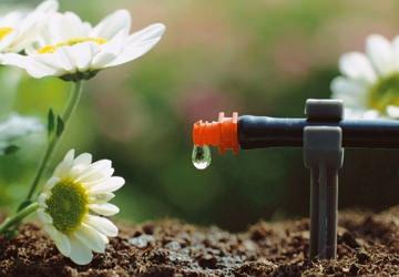 Купить системы автоматического полива (орошения) в саду на дачном участке: оборудование, комплектующие для автополива в теплице