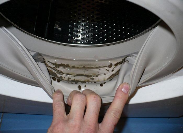 Плесень - причина неприятного запаха из машинки